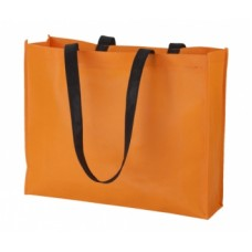 Tucson Shopping Bag